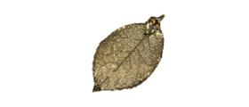 Blattrausch-Herstellungsprozess-Schritt4-mit-Edelmetall-umschliessen