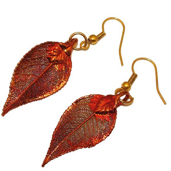 Immergrün Kupfer Ohrringe