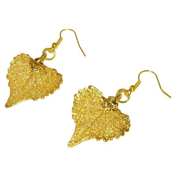 Pappel Gold Ohrringe