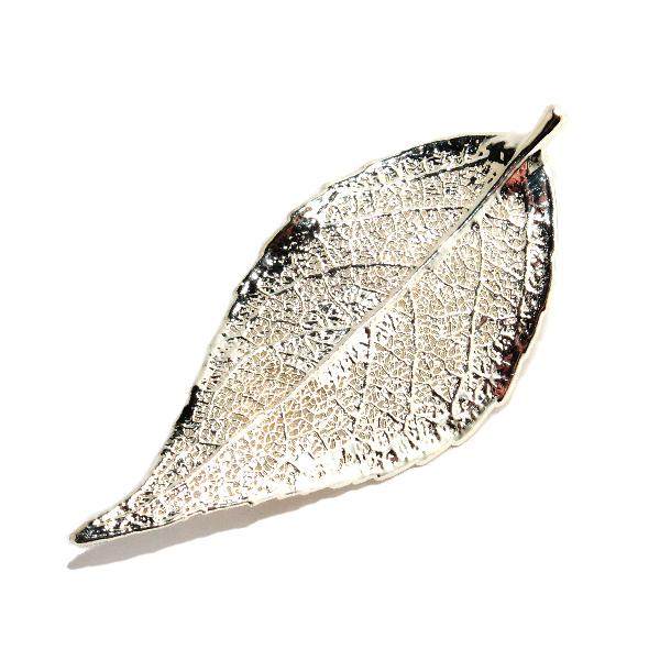 Immergrün Silber Brosche